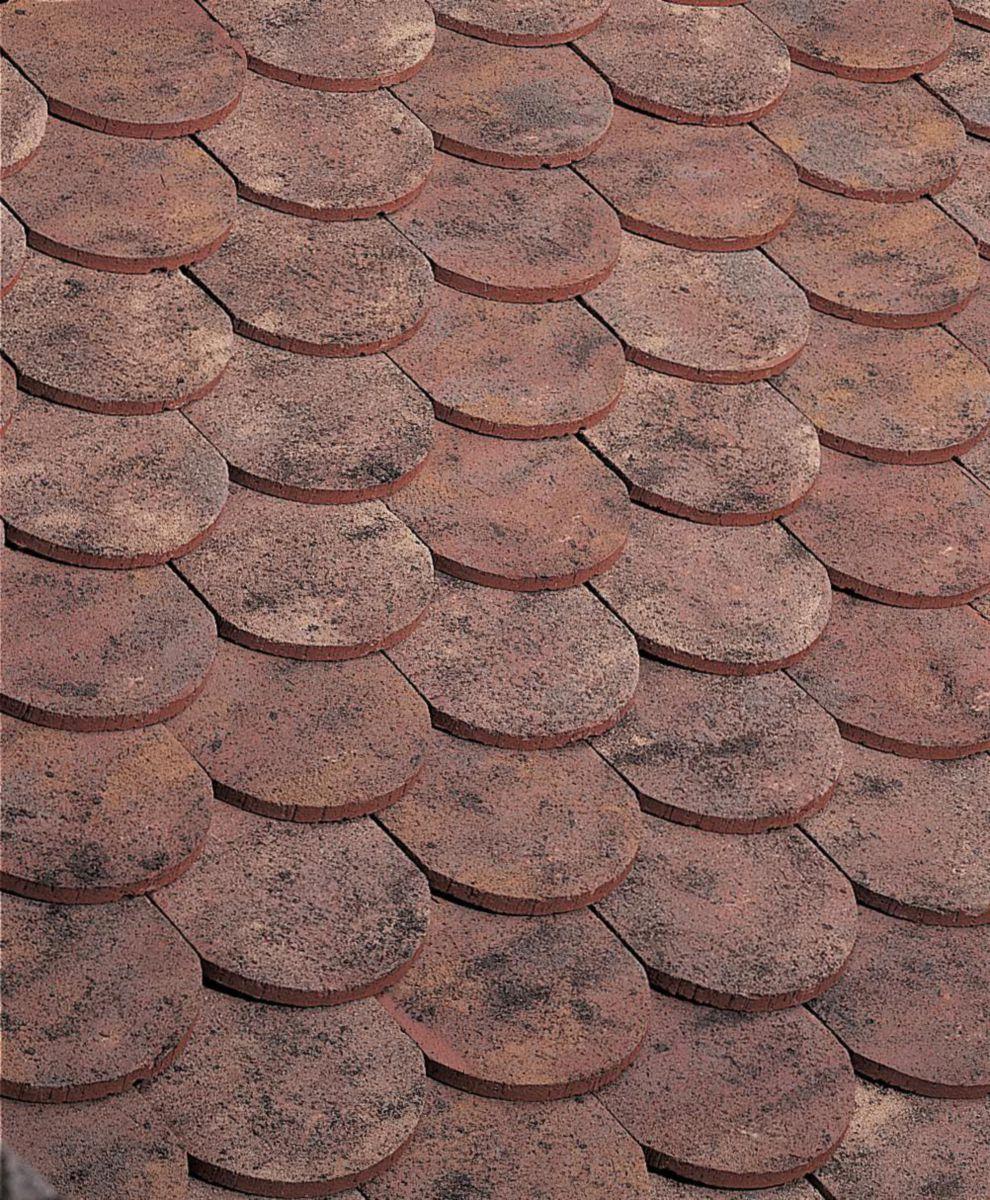 Edilians tuile terre cuite plate ecaille press e 17x27 - Prix tuile plate terre cuite ...