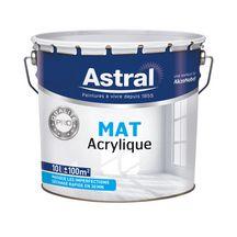 peinture acrylique int rieur qualit professionnelle blanc mat pot de 10 l astral peinture. Black Bedroom Furniture Sets. Home Design Ideas