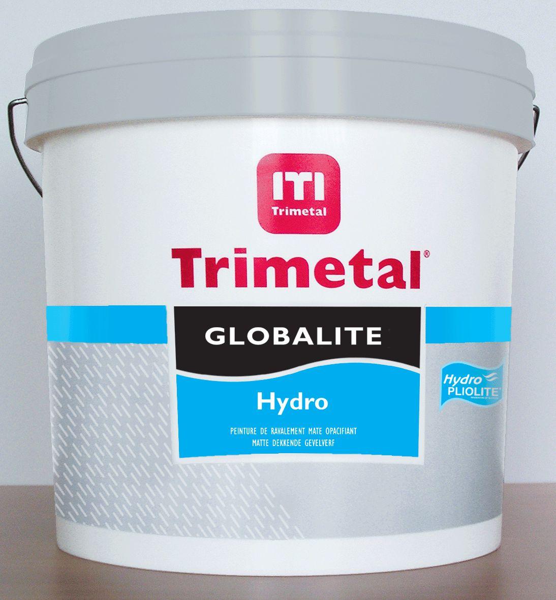 Trimetal Peinture Acrylique De Ravalement Globalite Hydro New