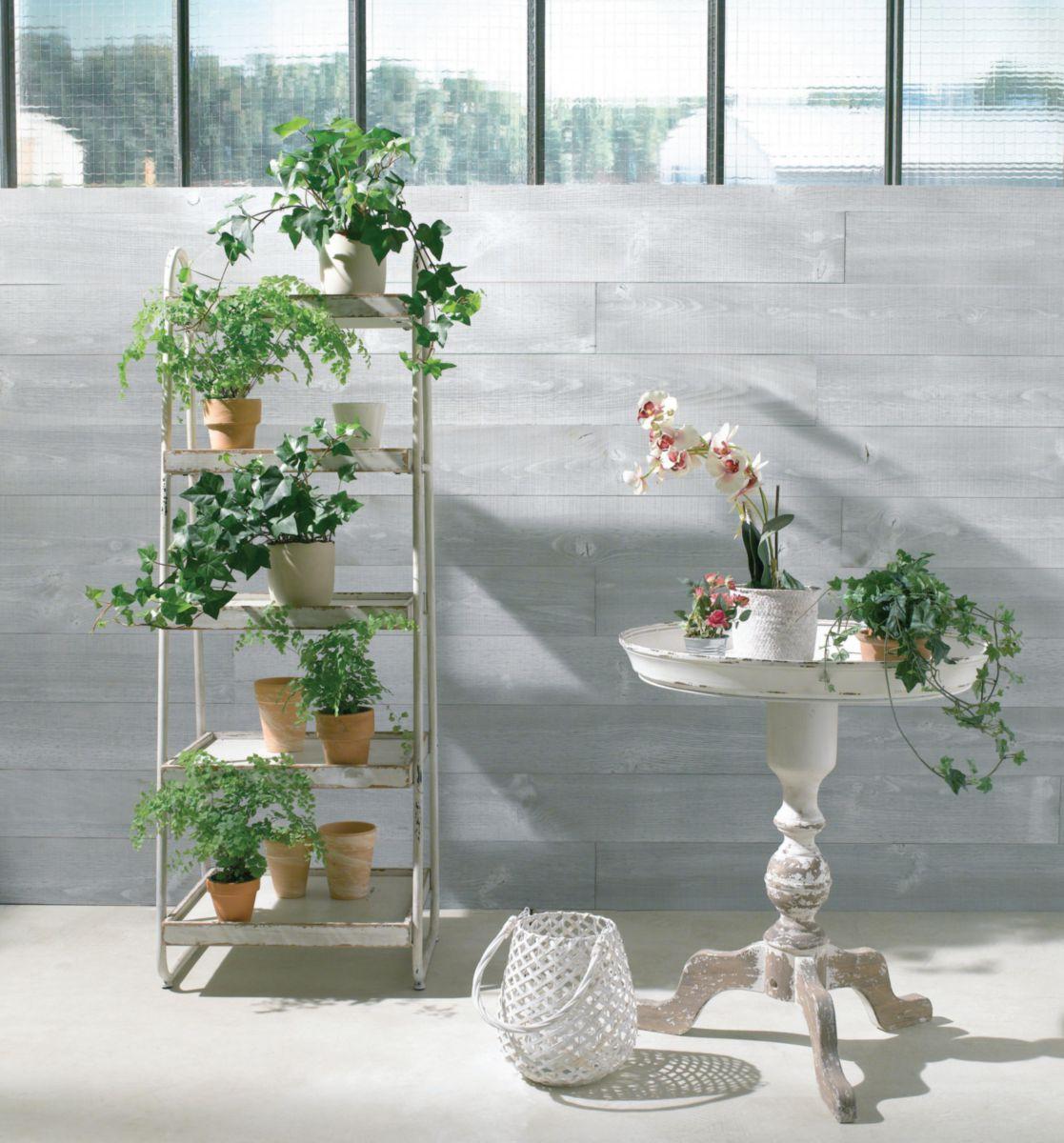 arte home lambris parement bois pin brut de sciage gris. Black Bedroom Furniture Sets. Home Design Ideas