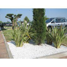 Galets et gravillons décoratif pour le jardin - Décoration ...