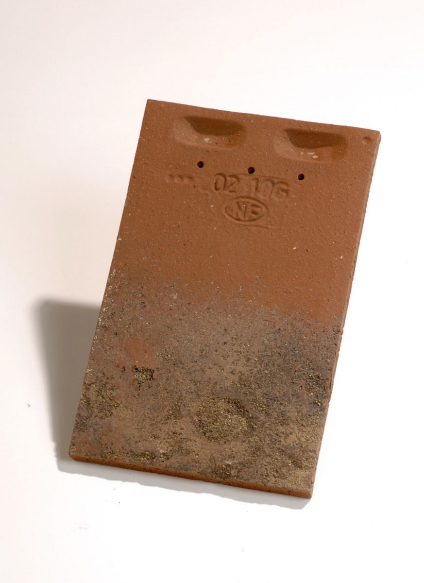 Edilians tuile plate press e 17x27 jacob terre cuite - Prix tuile plate terre cuite ...
