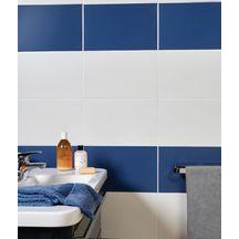 Carrelage Mural Faience Arte One Colors Mat Blanc 25x40 Cm