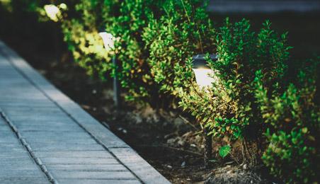 Lanternes basses éclairant une allée