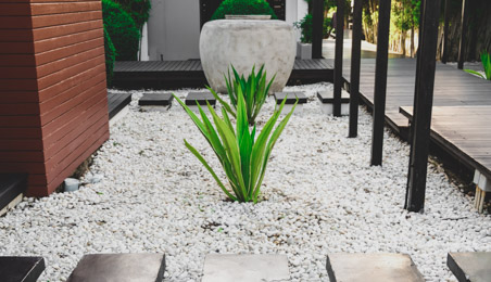 Bac à gravillons de style zen avec plante verte au milieu