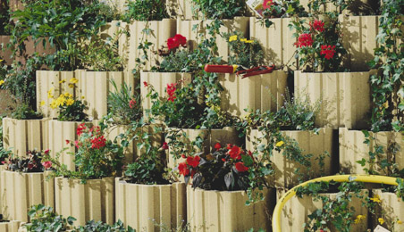 Mur de bacs en bois végétalisés