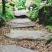 Allée de jardin en pas japonais