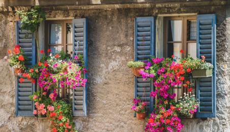 Volets battants en bois peint en bleu sur une façade rustique avec des jardinières de fleurs
