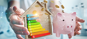 Focus sur le dispositif des Certificats d'Economie d'Energie (CEE)